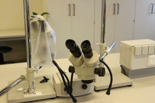 Stereomicroscope ZE-1624 Euromex