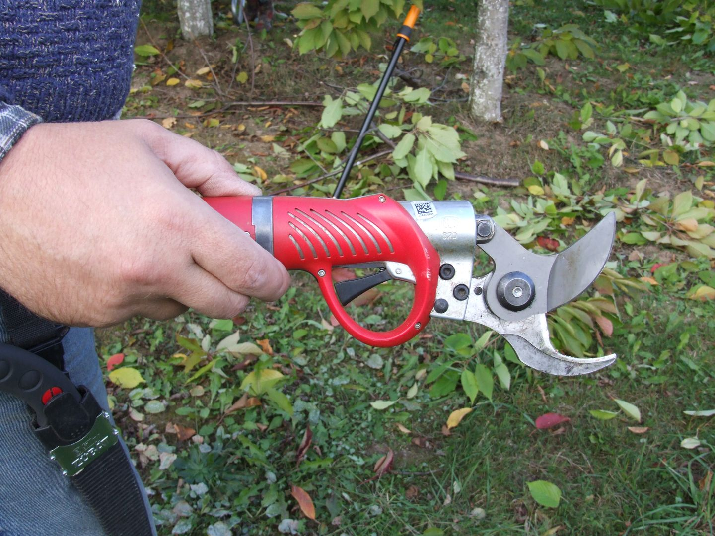 electric pruning shear
