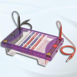 Qualitative PCR system