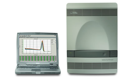 Real time PCR system