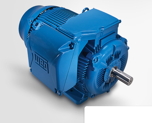 Three-Phase Electric Motor W22